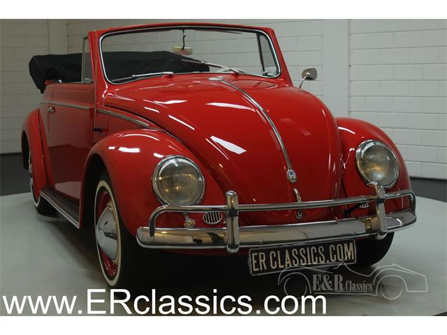 Picture of '59 Beetle - OUCP