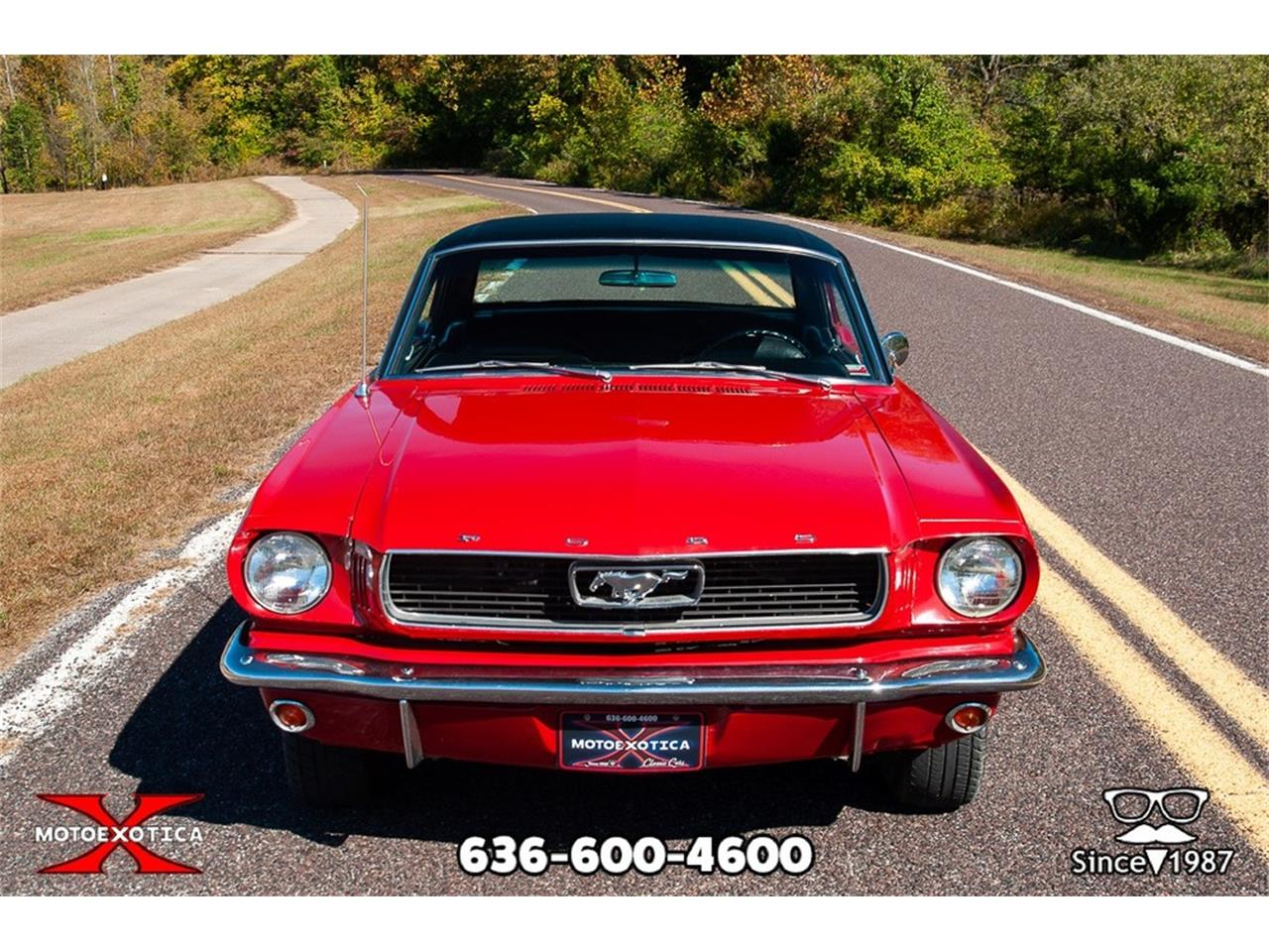 Large Picture of '66 Mustang - OURQ