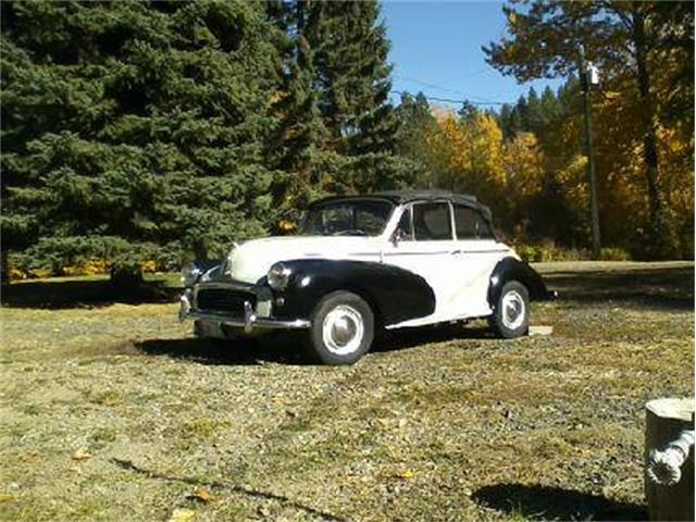 Picture of '67 Minor - OW16
