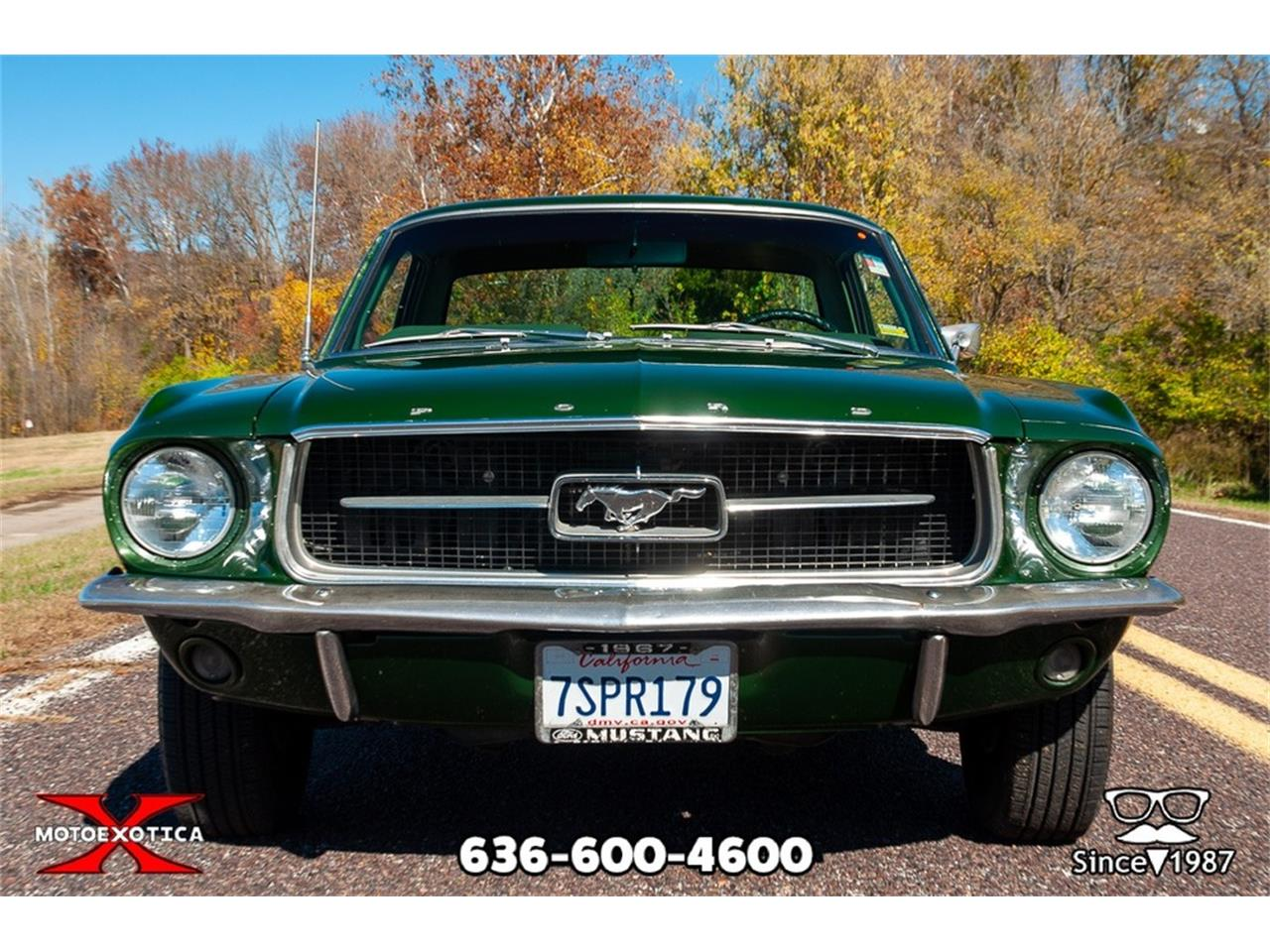 Large Picture of Classic 1967 Mustang - OWD0