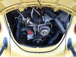Picture of '79 Beetle - OWNV