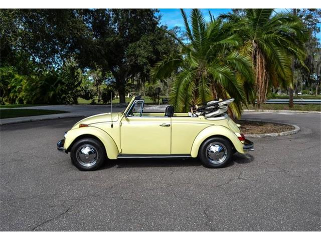 Picture of '70 Beetle - OXHK
