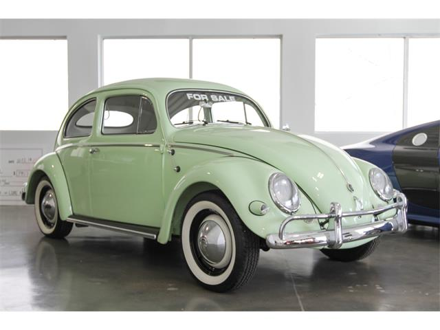 Picture of '56 Beetle - OXN2