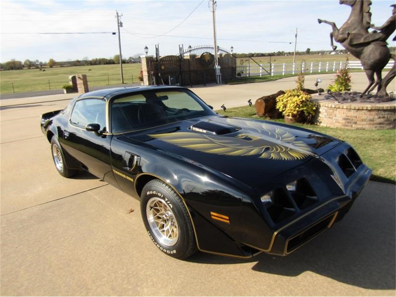 Large Picture of '79 Firebird Trans Am - OY2Z