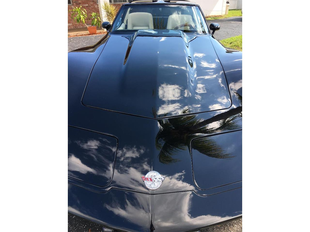 Large Picture of '78 Corvette - OY8Q