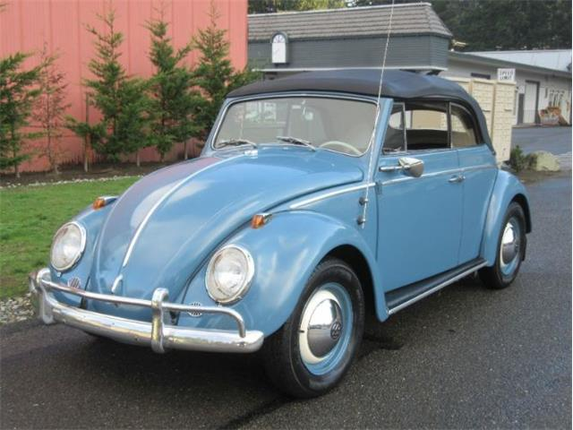 Picture of '60 Beetle - OYA5