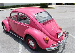 Picture of '67 Beetle - OYCI