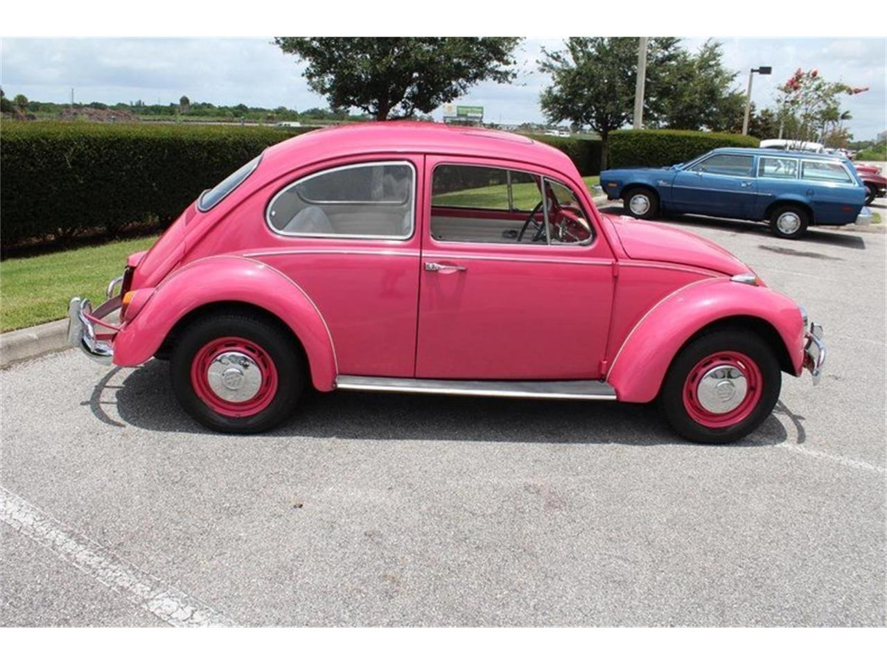 Large Picture of '67 Beetle - OYCI