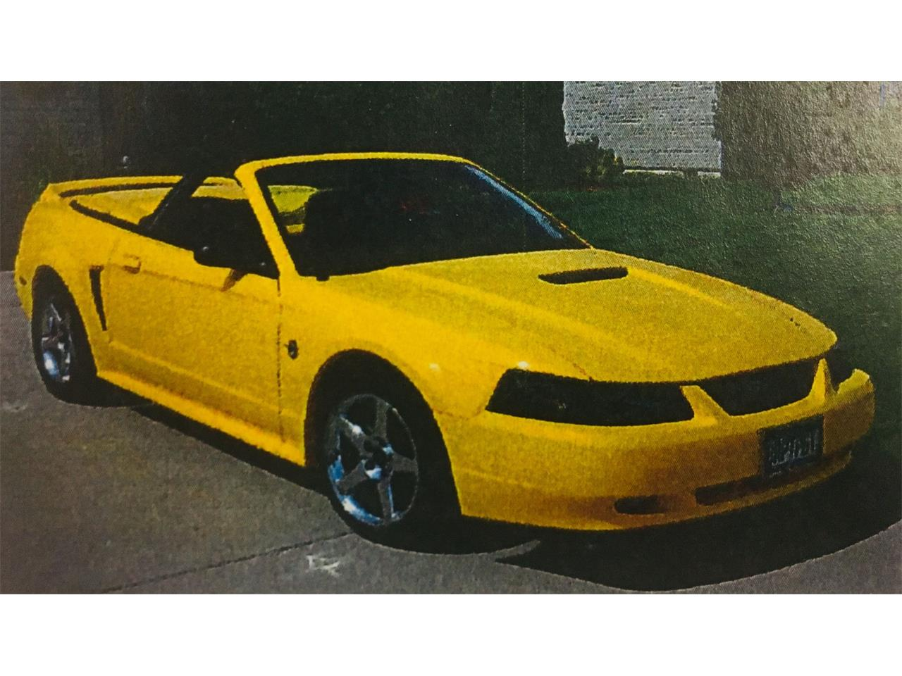 Large picture of 99 mustang oze5