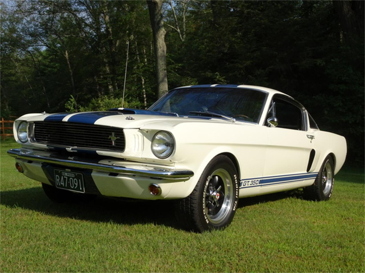 1965 Shelby GT350 for Sale | ClassicCars.com | CC-1166114