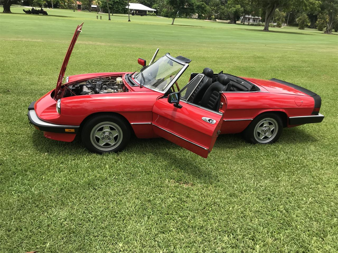 Large Picture of '84 2000 Spider Veloce - OZSA