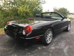 Picture of '02 Thunderbird - P0PU
