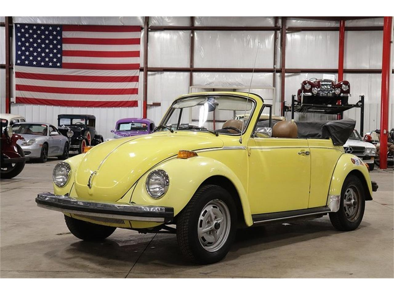 Large Picture Of 79 Beetle P0rm