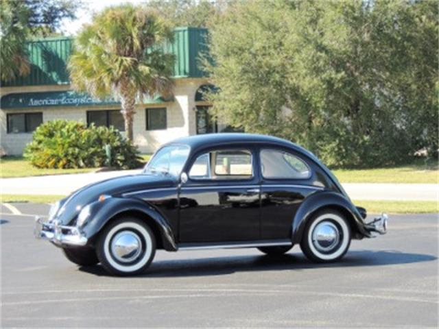 Picture of '58 Beetle - P0YL