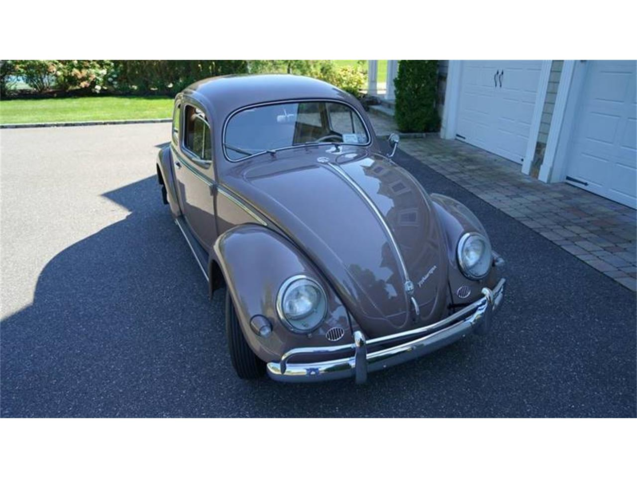Large Picture of '55 Beetle - OVOE