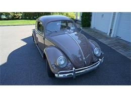 Picture of 1955 Volkswagen Beetle - $37,500.00 - OVOE