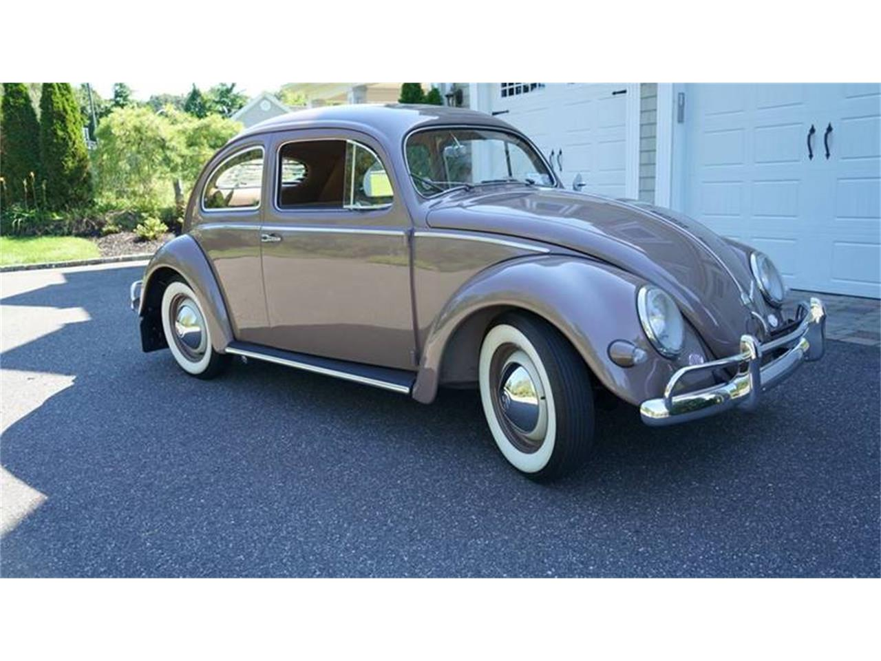 Large Picture of 1955 Beetle located in Old Bethpage  New York - $37,500.00 Offered by Fiore Motor Classics - OVOE