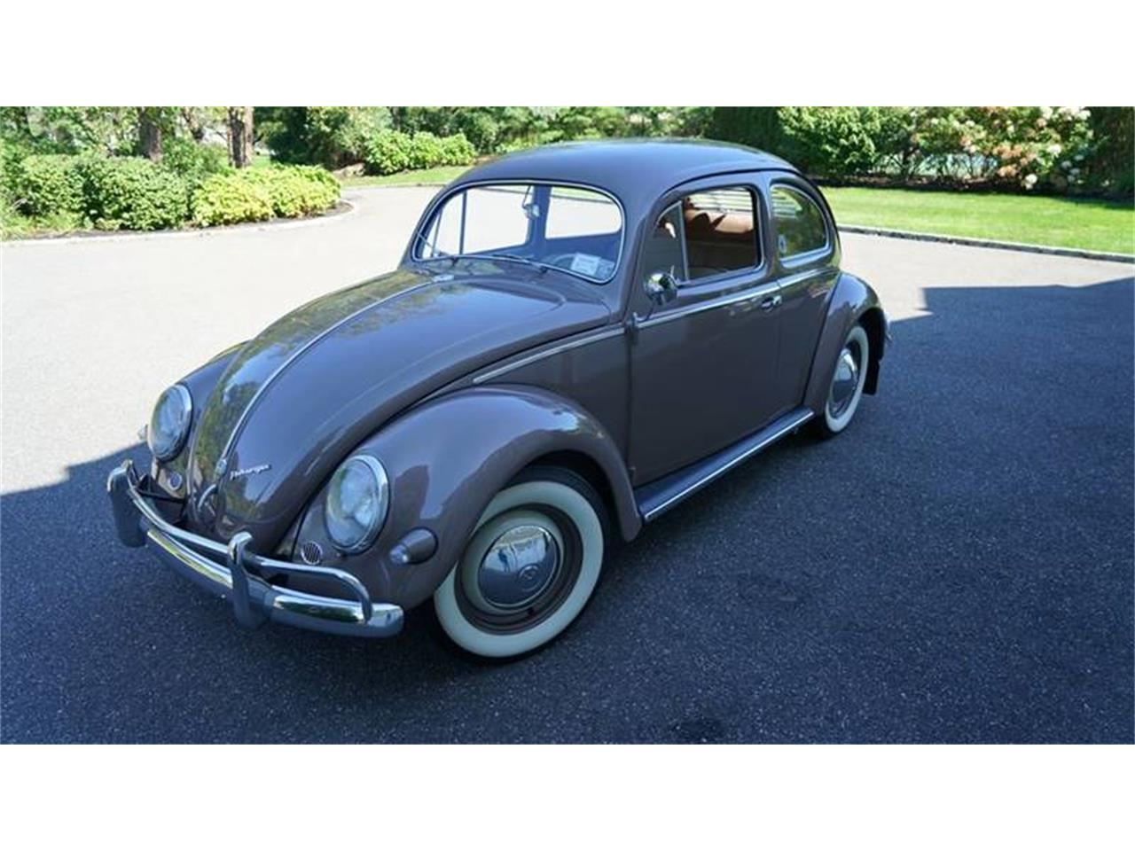 Large Picture of '55 Beetle located in Old Bethpage  New York - $37,500.00 Offered by Fiore Motor Classics - OVOE