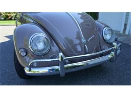 Picture of '55 Beetle located in Old Bethpage  New York Offered by Fiore Motor Classics - OVOE