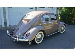 Picture of 1955 Beetle located in Old Bethpage  New York - $37,500.00 - OVOE