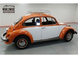 Picture of '74 Beetle - P1F5
