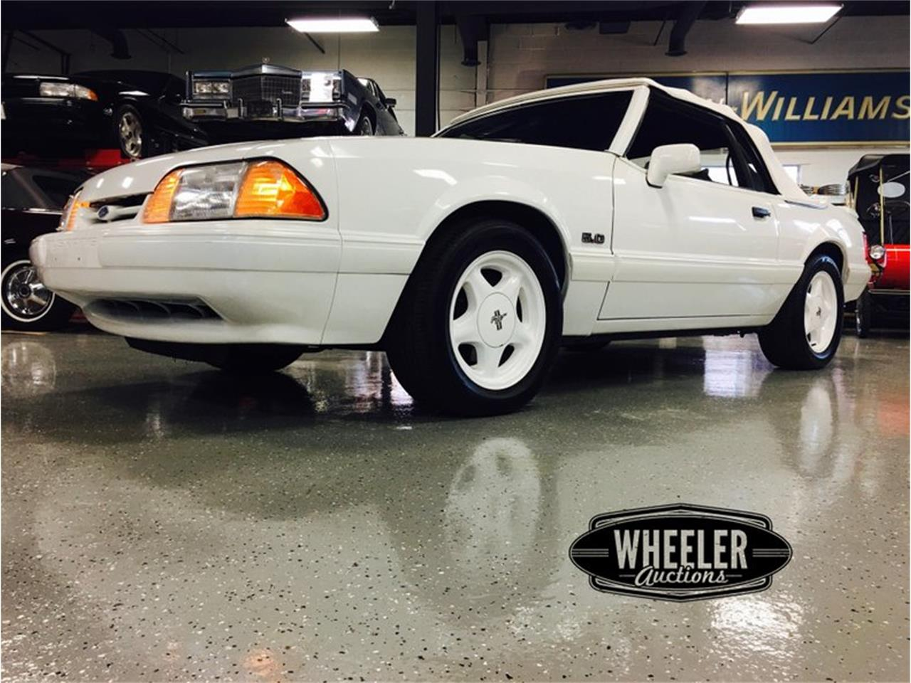 Large Picture of '93 Mustang - P1LH
