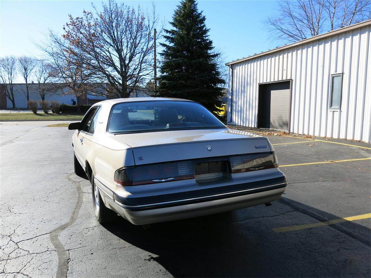 Large Picture of '88 Thunderbird - P1MW