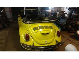 Picture of '71 Super Beetle - P1MY