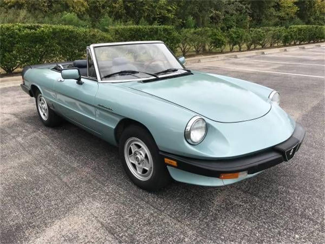 Large Picture of '83 2000 Spider Veloce located in Cadillac Michigan Offered by Classic Car Deals - P1Z5