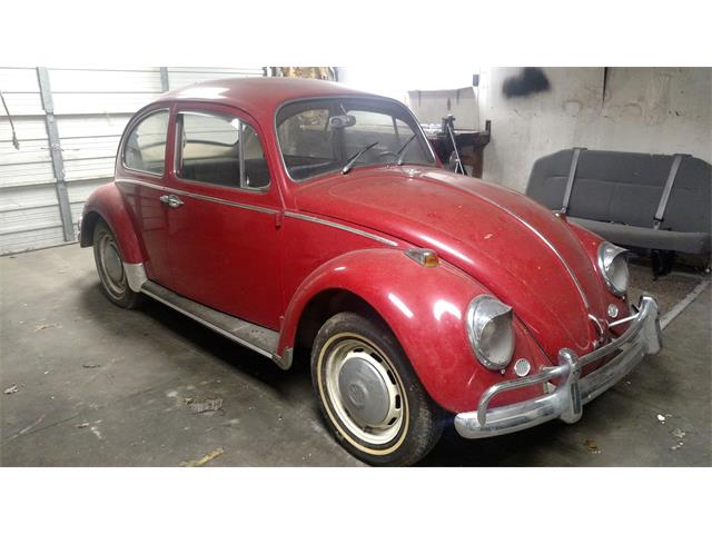 Picture of Classic '66 Volkswagen Beetle located in Muncie Indiana - P4RA