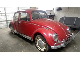 Picture of '66 Beetle - P4RA