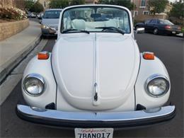 Picture of '79 Super Beetle - P4Y7