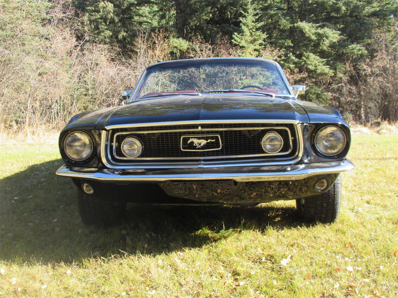 Large Picture of '68 Mustang - P6KS