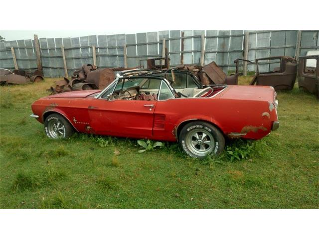 Picture of Classic '67 Ford Mustang Offered by  - P6OV