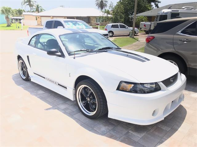 Classic Ford Mustang Cobra For Sale On Classiccars Com
