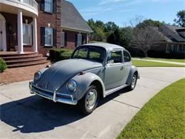 Picture of '67 Beetle - P7I4