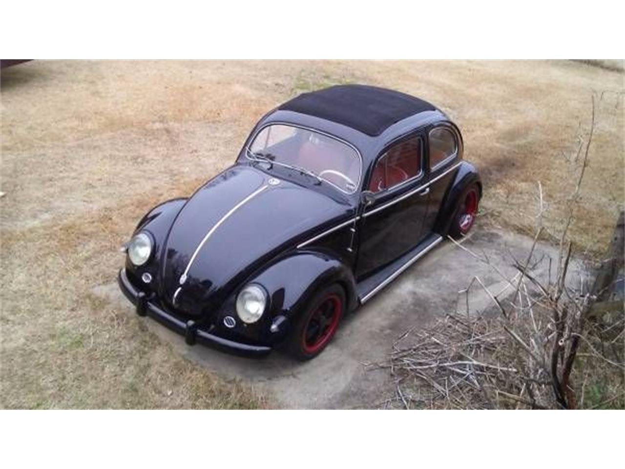 Large Picture of Classic 1956 Volkswagen Beetle - P7PW