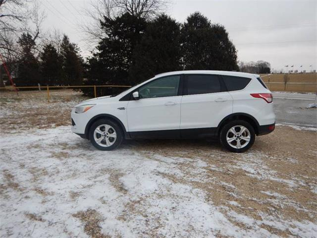 Picture of '13 Escape Offered by  - P7TQ