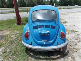 Picture of '72 Beetle - P7Y7
