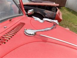 Picture of Classic '69 Beetle - P7YD