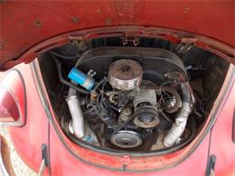 Picture of Classic '69 Volkswagen Beetle located in Michigan - $7,495.00 Offered by Classic Car Deals - P7YD