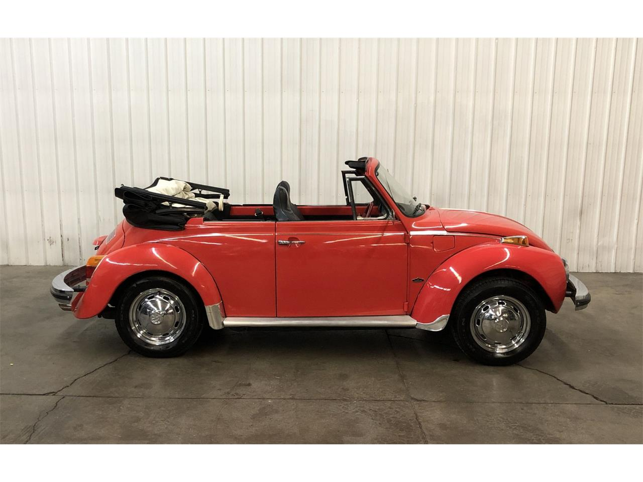 Large Picture of '75 Beetle - P8K5