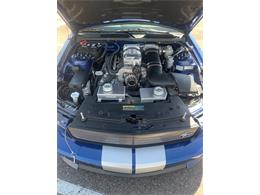 Picture of '08 Mustang - P3GN