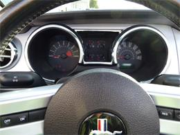 Picture of '05 Mustang GT - P9O8