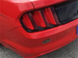 Picture of '16 Mustang - P9VY