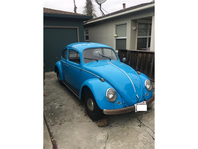 Picture of '63 Beetle - PA2M