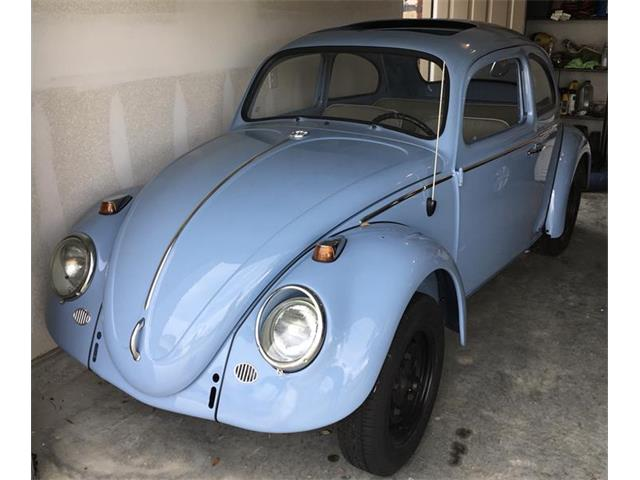 Picture of '64 Beetle - PA34