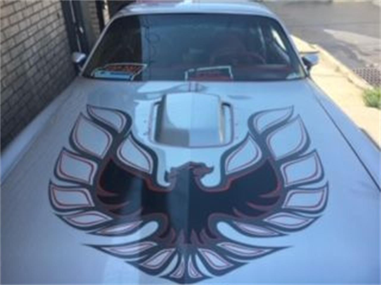 Large Picture of '77 Firebird Trans Am - PA7Z