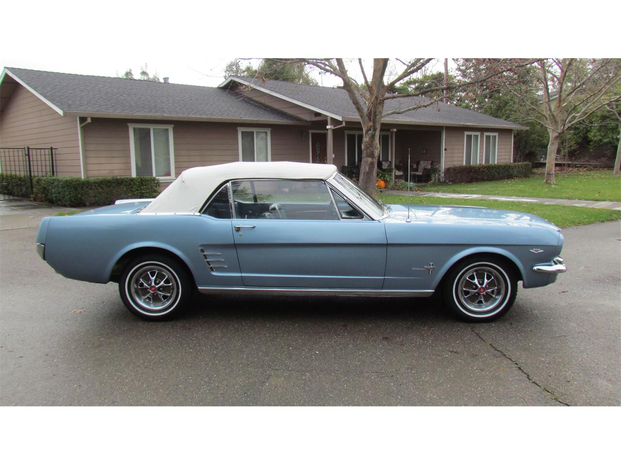 Large Picture of '66 Mustang - PBGP