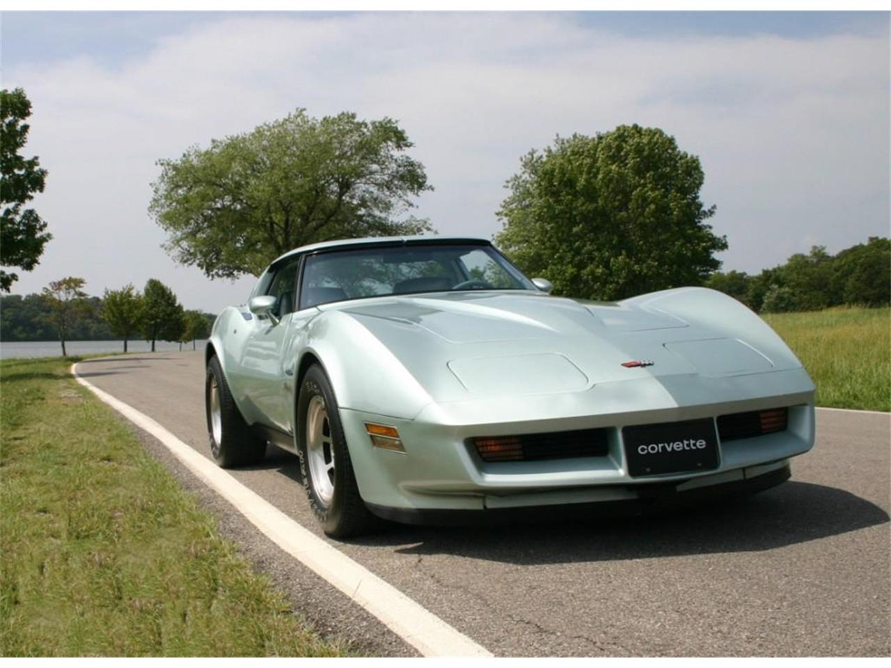 Large Picture of '82 Corvette Offered by a Private Seller - PBGY